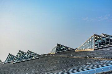 Dak van Rotterdam Centraal van Sem Lemmers