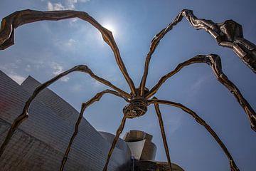 Spinne aus Bilbao für das Guggenheim-Museum in Bilbao von Easycopters