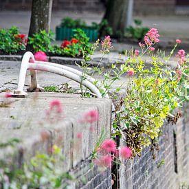 Bloemen op de kade van Frans Blok