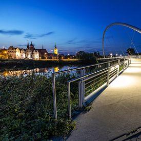 Dessau - Tiergartenbrücke und Altstadtskyline von Frank Herrmann