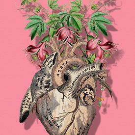 Matters of the Heart sur Marja van den Hurk