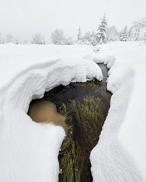 Beek in de sneeuw