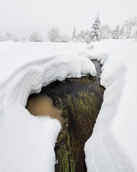 Strom im Schnee von Raoul Baart