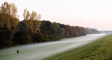 Dauw en aardetinten in herfstige Flevopolder, Nederland, fotoprint van Manja Herrebrugh - Outdoor by Manja