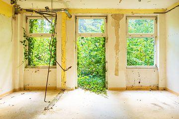 garden room von Michael Schulz-Dostal