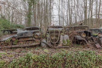 Oldtimers op een rij van Lien Hilke
