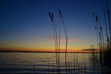 Sonnenuntergang am Wasser in Zeewolde von Robin van Maanen