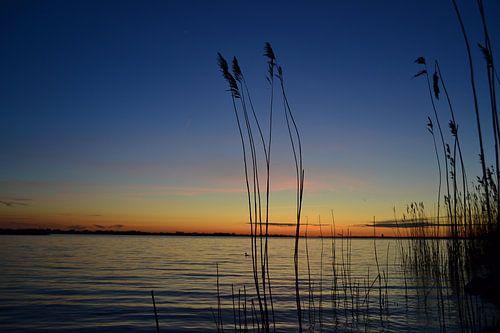 Zonsondergang aan de waterkant in Zeewolde