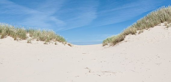 Heuvelachtige duinen