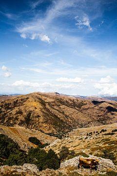 Bergen in Sardinië | Italië van Yvette Baur