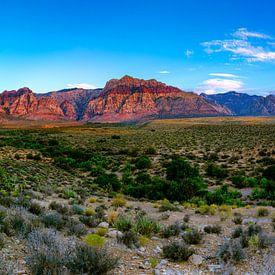 Wijds panorama Red Rock Canyon - Las Vegas van Remco Bosshard