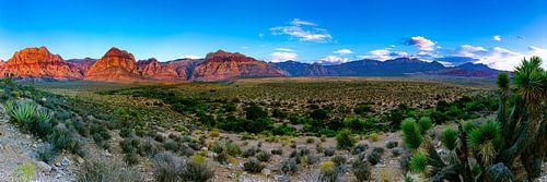 Large panorama Red Rock Canyon - Las Vegas