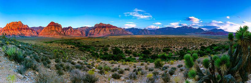 Breites Panorama Red Rock Canyon - Las Vegas von Remco Bosshard