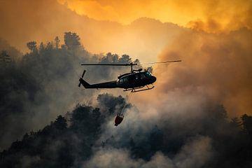 Incendie de forêt, Italie - 02 sur Jorn Wilms