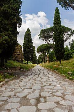 Via Appia Antica 02 van Marcel van der Voet