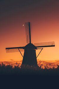 Sonnenuntergang zwischen den Mühlen