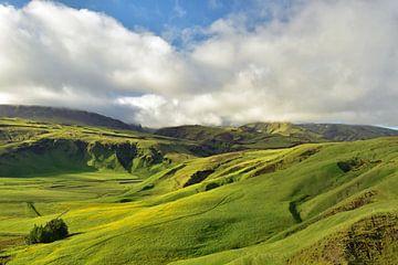 Grünes Tal in Island von Renzo de Jonge