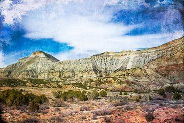 Veelkleurig woestijnlandschap in Colorado, VS van Rietje Bulthuis