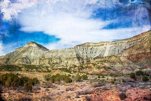 Veelkleurig woestijnlandschap in Colorado, VS