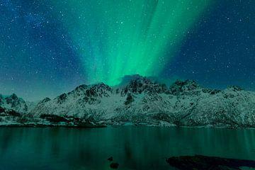 Nordlichter, Polarlicht oder Aurora Borealis im nächtlichen Himmel über den Lofoten Inseln in Nordno von Sjoerd van der Wal