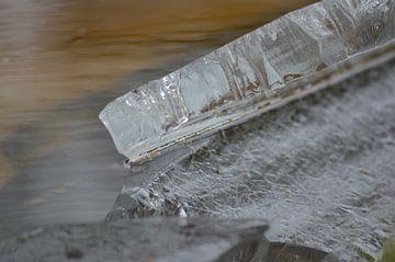 Cold as ice... von Grietje van der Reijnst-Brak