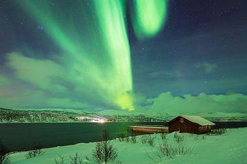 Noorderlicht boven een fjord van