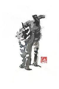 rekkendekkende kat van philippe imbert