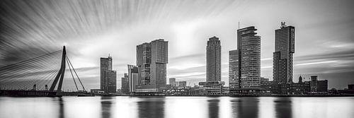 Skyline van Rotterdam met de kop van zuid van