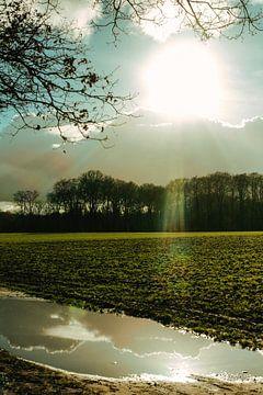 Zonlicht reflectie van Ocmer Fotografie