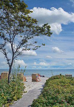 Sommer an der Ostsee von Peter Eckert