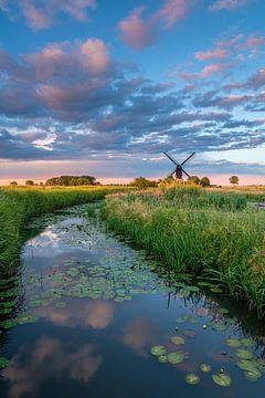 Wasserweg zur Mühle von Jan Koppelaar