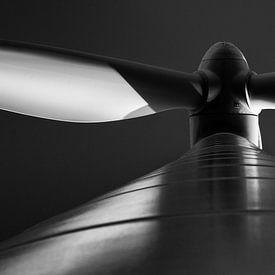 Windmolen van Leo Langen
