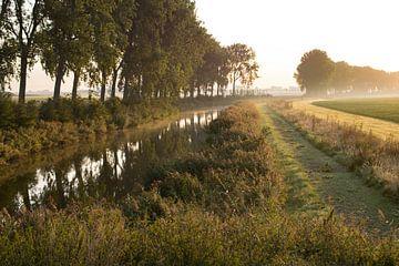 Typisch Zeeuws-Vlaams polderland in ochtendzon van Anne Hana