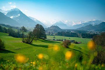 frühlingshafter Blick vom Malerwinkel im Allgäu auf die gesamten Allgäuer Alpen von Leo Schindzielorz