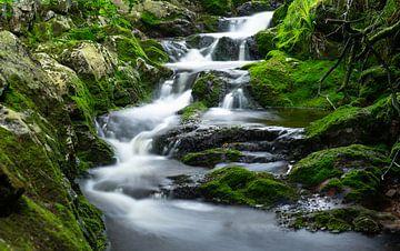 Wasserfall Ninglinspo Belgische Ardennen von Bart cocquart