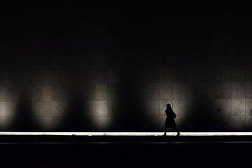 Vrouw voor het licht von Leon Doorn