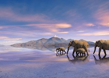 Kudde olifanten van Alex Neumayer