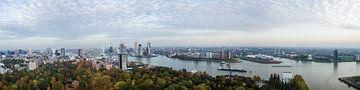 De skyline van Rotterdam von Dennis Van Den Elzen