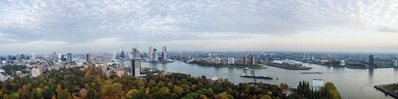 De skyline van Rotterdam van Dennis Van Den Elzen