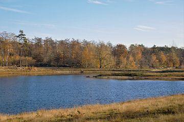Herfstlandschap in Brabant von DoDiLa Foto's