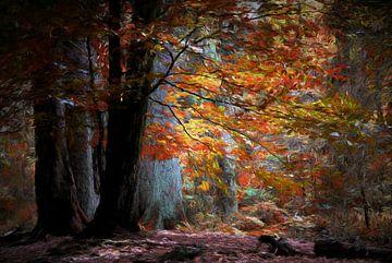 Kleurrijk Herfsttafereel von Tejo Coen
