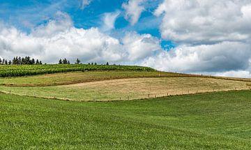 Golvende landbouwvelden van Werner Lerooy