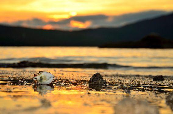 Sundown at Whale Island