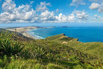 Uitzicht op Cape Reinga, Nieuw Zeeland van Christian Müringer