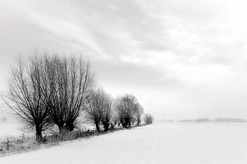 Schneelandschaft im Winter