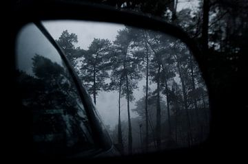 De weerspiegeling van bomen  von AnyTiff (Tiffany Peters)