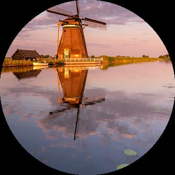 Typisch Nederlands van Jan Koppelaar