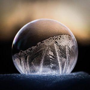 Gefrorene Blase von Ab Wisselink