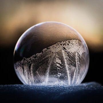 Bevroren zeepbel van Ab Wisselink