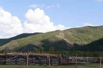uitzicht met hekken tegen het vee von Robert Lotman